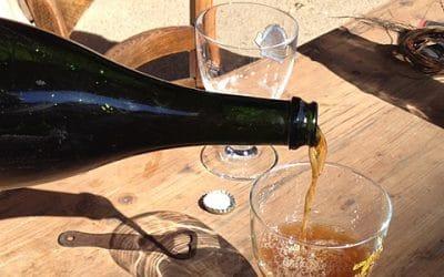Le plaisir et le goût d'une bière faite maison - vuparici