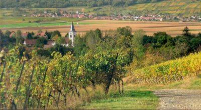 Ce livre retrace l'histoire du village d''Odratzheim