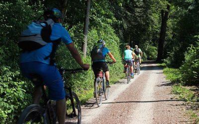 Des cyclistes courtois sur une piste cyclable