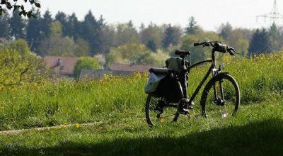 Le vélo, la pasion d'un velocipède